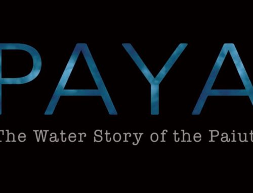 PAYA THE MOVIE