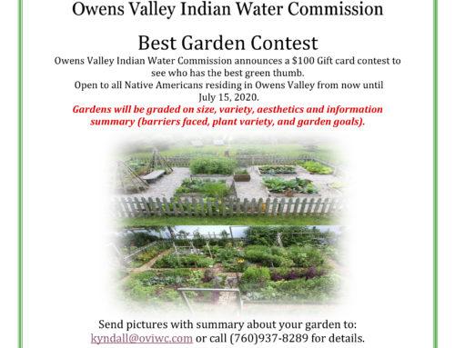 2020 Best Garden Contest