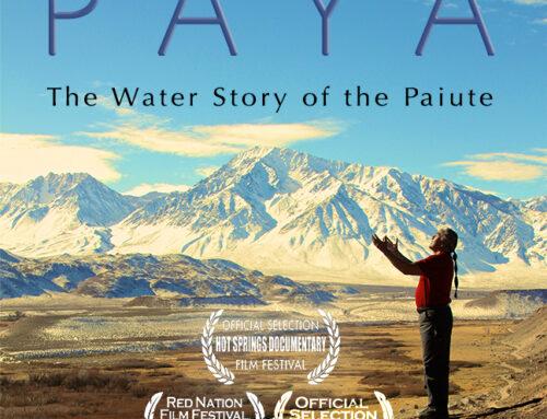 Paya Movie Online Screening May 25